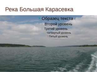 Река Большая Карасевка
