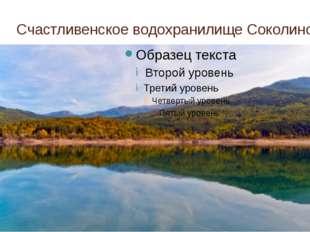 Счастливенское водохранилище Соколиное