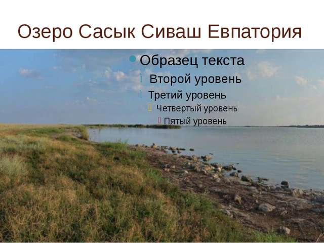 Озеро Сасык Сиваш Евпатория