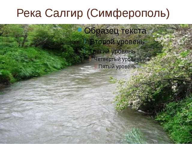 Река Салгир (Симферополь)