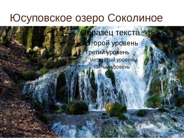Юсуповское озеро Соколиное