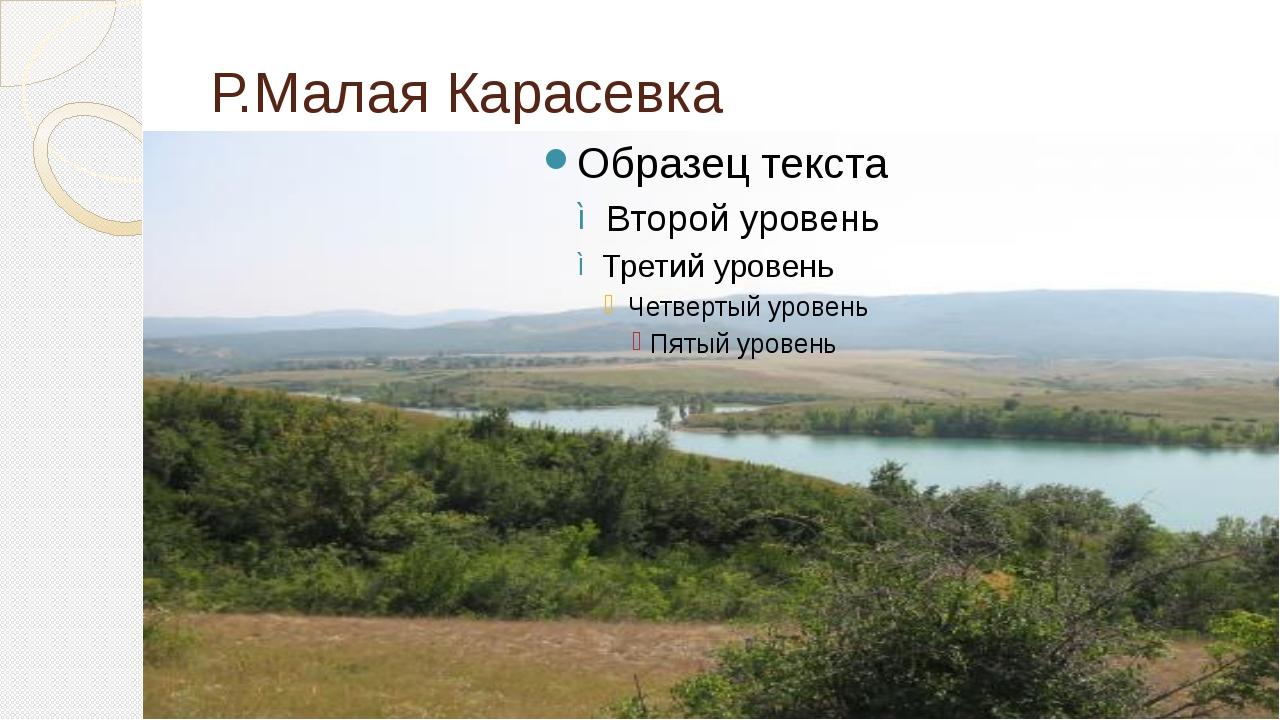 Р.Малая Карасевка