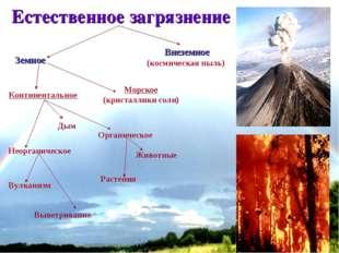 * Естественное загрязнение Земное Внеземное (космическая пыль) Континентально