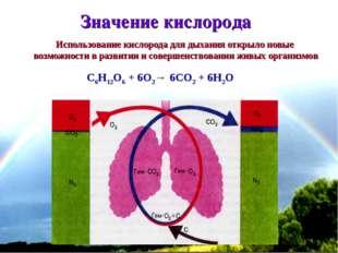 * C6H12O6 + 6O2→ 6CO2 + 6H2O Значение кислорода Использование кислорода для д