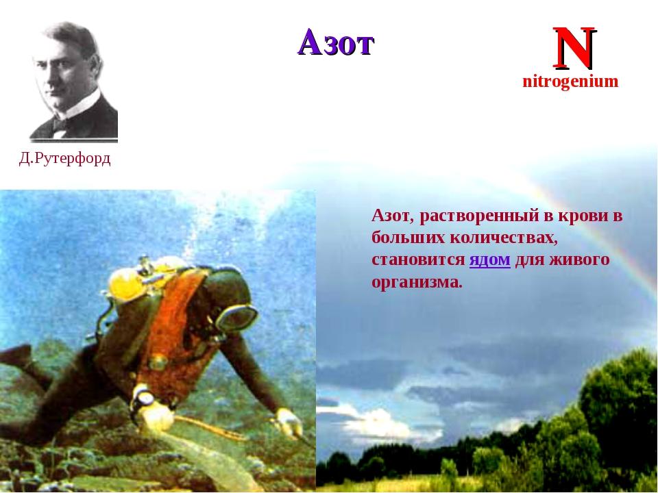 * Азот Д.Рутерфорд N nitrogenium Азот, растворенный в крови в больших количес...