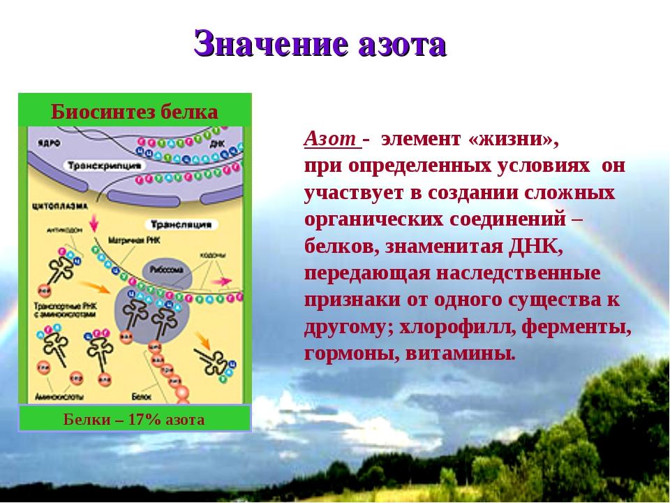 * Значение азота Азот - элемент «жизни», при определенных условиях он участву...