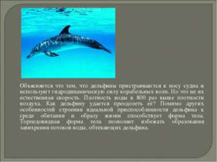 Объясняется это тем, что дельфины пристраиваются к носу судна и используют г