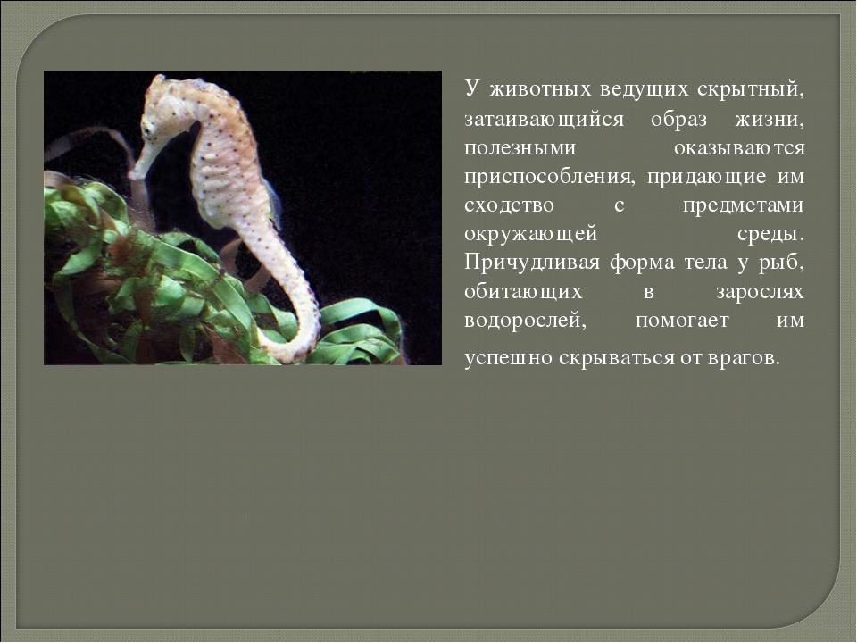 У животных ведущих скрытный, затаивающийся образ жизни, полезными оказываютс...