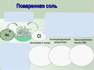 Приправа к пище Консервирующее вещество Производство мыла,СМС Соленая на вкус