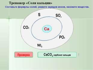 Са SO4 N03 PO4 S CO3 Проверка CaS СаSО4 Проверка Проверка Проверка Проверка С