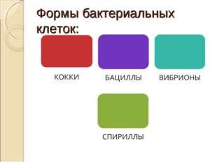 Формы бактериальных клеток: