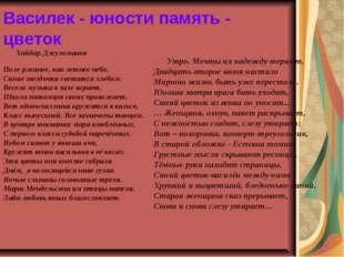 Василек - юности память - цветок Хайдар Джуломанов Поле ржаное, как летнее не