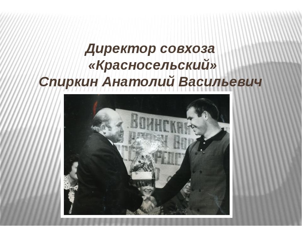 Директор совхоза «Красносельский» Спиркин Анатолий Васильевич