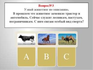 Вопрос№3 Узнай животное по описанию. В прошлом это животное заменяло трактор