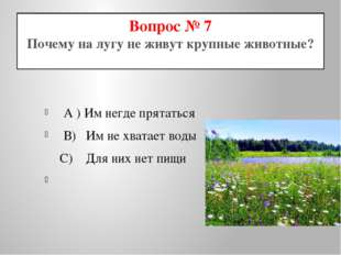 Вопрос № 7 Почему на лугу не живут крупные животные? A ) Им негде прятаться В