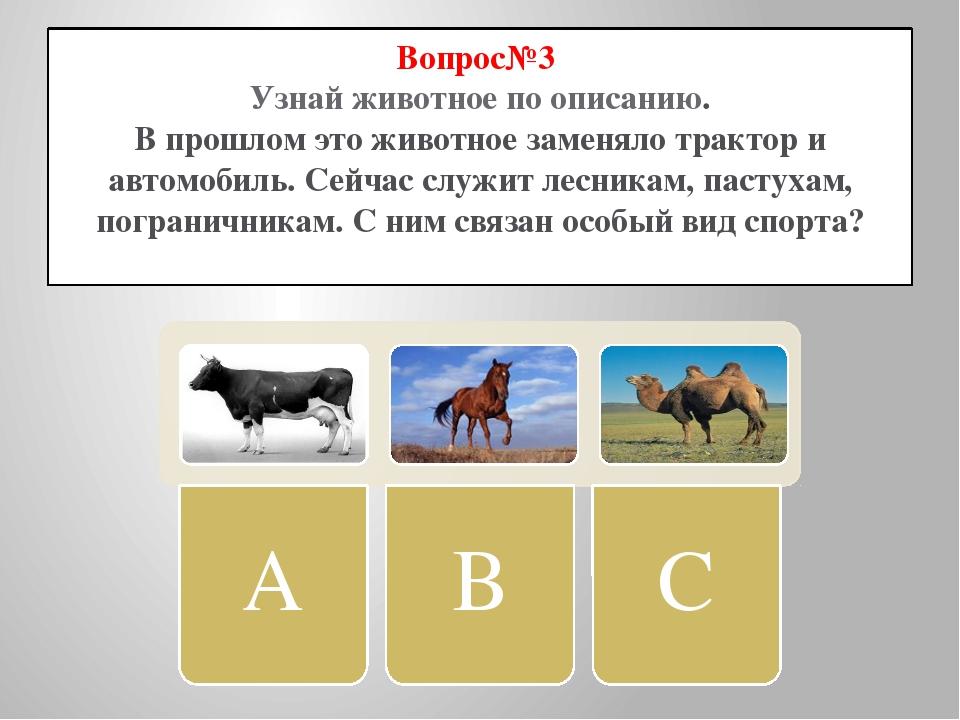 Вопрос№3 Узнай животное по описанию. В прошлом это животное заменяло трактор...