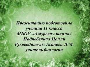 Презентацию подготовила ученица 11 класса МБОУ «Амурская школа» Поднебенная Н