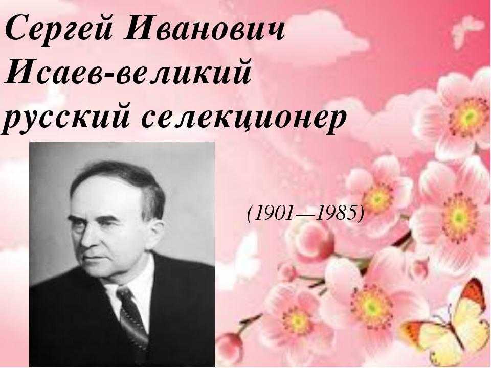 Сергей Иванович Исаев-великий русский селекционер (1901—1985)