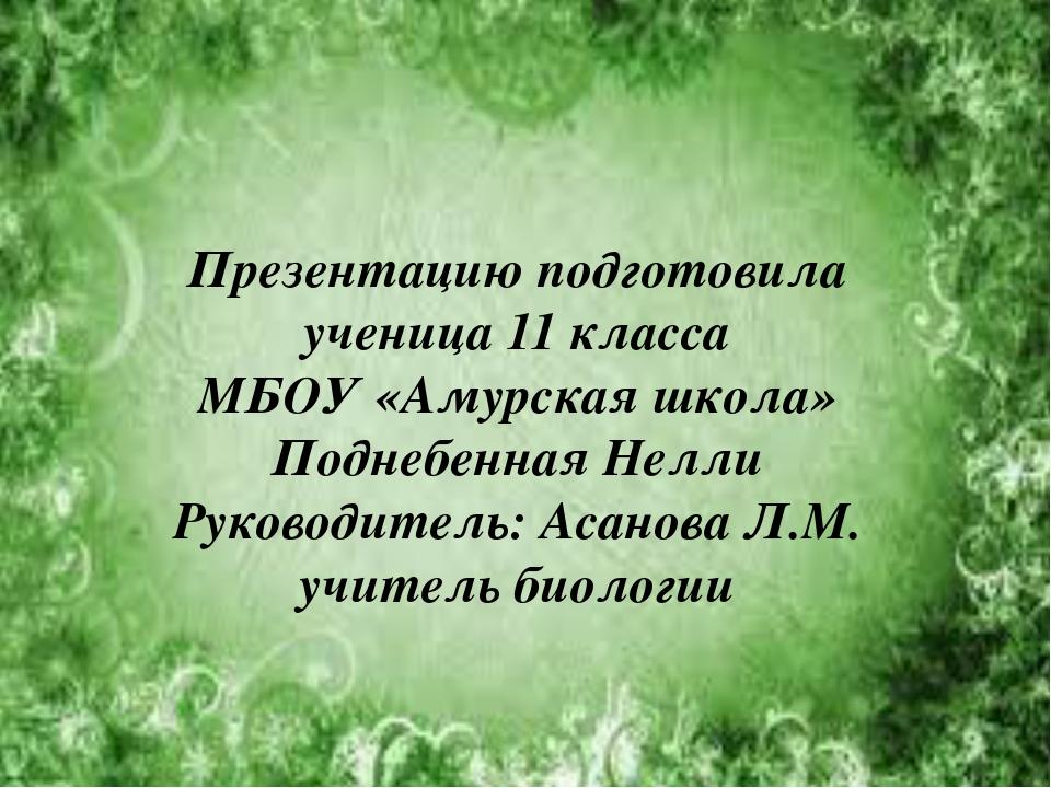Презентацию подготовила ученица 11 класса МБОУ «Амурская школа» Поднебенная Н...