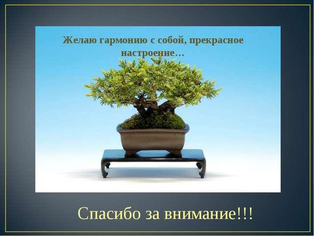 Спасибо за внимание!!! Желаю гармонию с собой, прекрасное настроение…