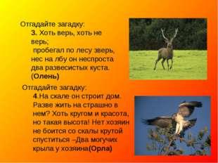 Отгадайте загадку: 3. Хоть верь, хоть не верь; пробегал по лесу зверь, нес на