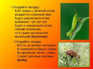 - Отгадайте загадку: 5.Из травы с зеленой кочки, раздается странный звук. Буд