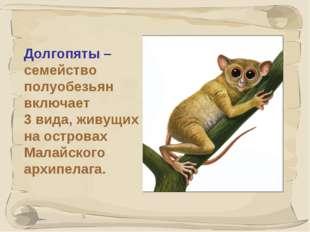 * Долгопяты – семейство полуобезьян включает 3 вида, живущих на островах Мала