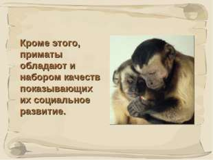 * Кроме этого, приматы обладают и набором качеств показывающих их социальное