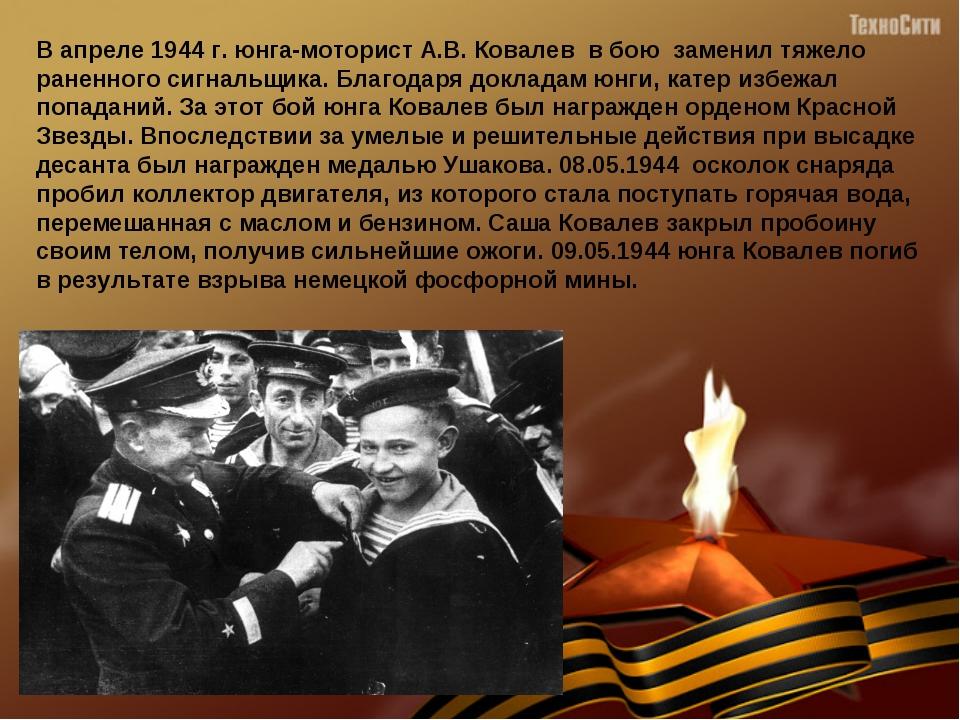 В апреле 1944 г. юнга-моторист А.В. Ковалев в бою заменил тяжело раненного...