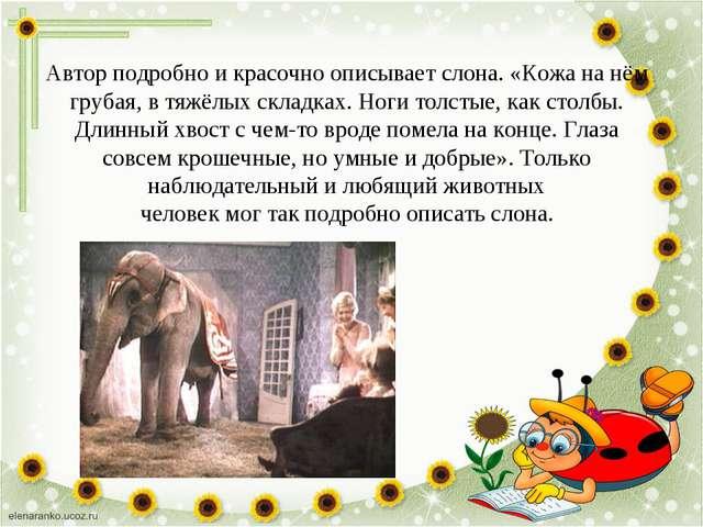 Автор подробно и красочно описывает слона. «Кожа на нём грубая, в тяжёлых скл...
