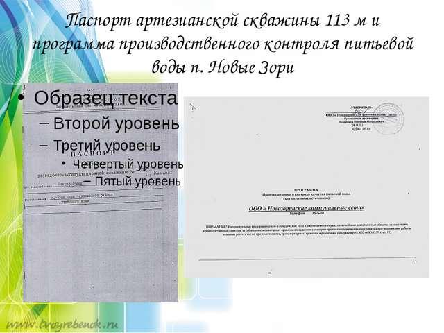 Паспорт артезианской скважины 113 м и программа производственного контроля пи...