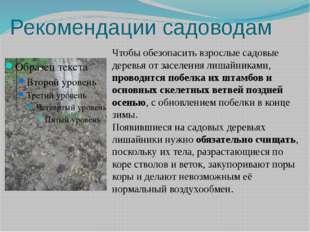 Рекомендации садоводам Чтобы обезопасить взрослые садовые деревья от заселени