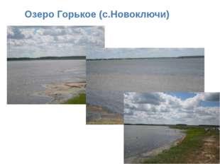 Озеро Горькое (с.Новоключи)