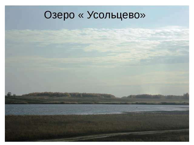 Озеро « Усольцево» Озеро Усолье