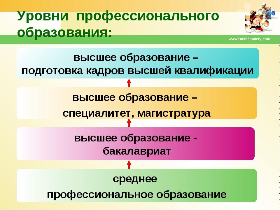 www.themegallery.com высшее образование – специалитет, магистратура высшее об...