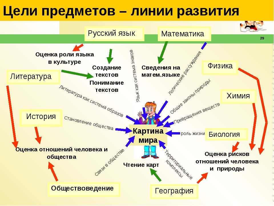 29 Цели предметов – линии развития Химия География Обществоведение Биология И...
