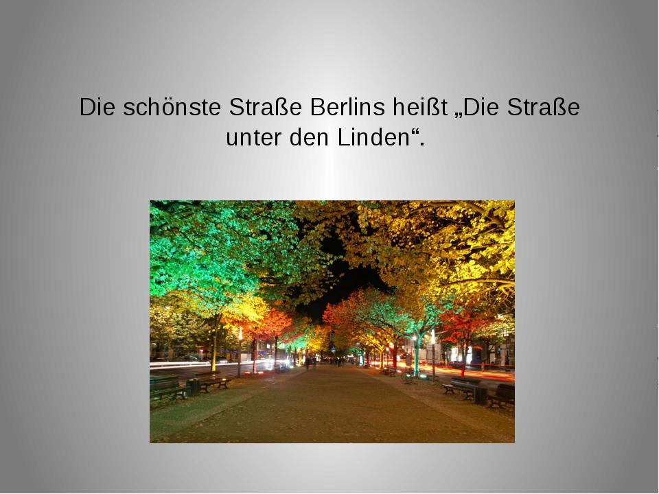 """Die schönste Straße Berlins heißt """"Die Straße unter den Linden""""."""