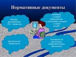 Нормативные документы Должностные обязанности Положение об организации профил