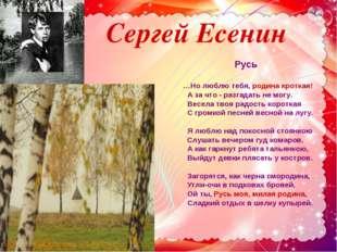 Сергей Есенин Русь …Но люблю тебя, родина кроткая! А за что - разгадать не