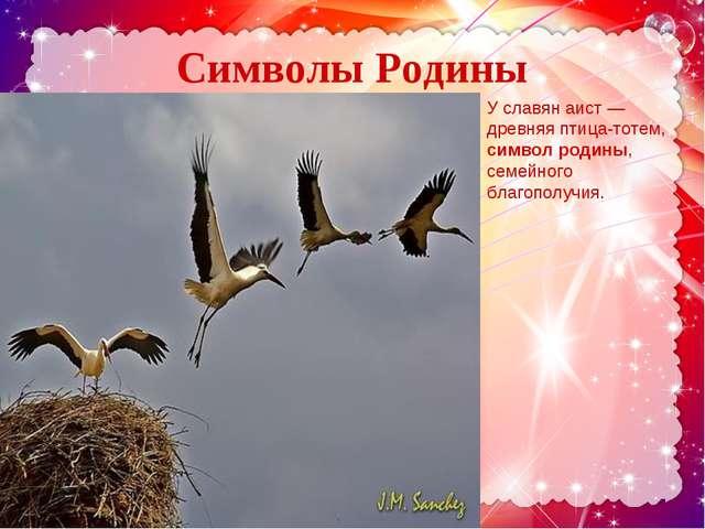 Символы Родины У. . У славян аист — древняя птица-тотем, символ родины, семей...