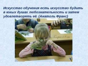 Искусство обучения есть искусство будить в юных душах любознательность и зате