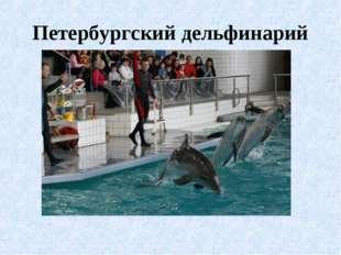 Петербургский дельфинарий