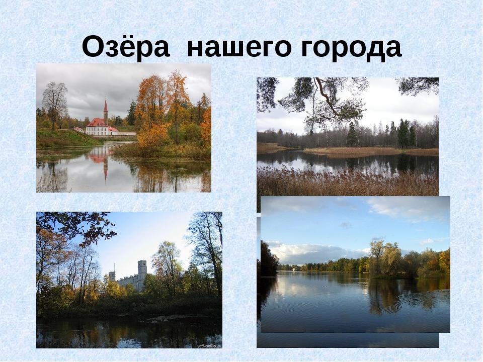 Озёра нашего города