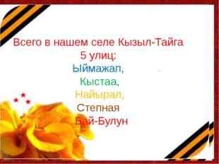 Всего в нашем селе Кызыл-Тайга 5 улиц: Ыймажап, Кыстаа, Найырал, Степная Бай-