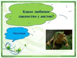 Какое любимое лакомство у аистов? Лягушки