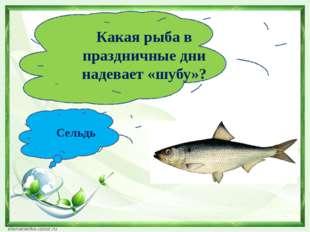 Какая рыба в праздничные дни надевает «шубу»? Сельдь
