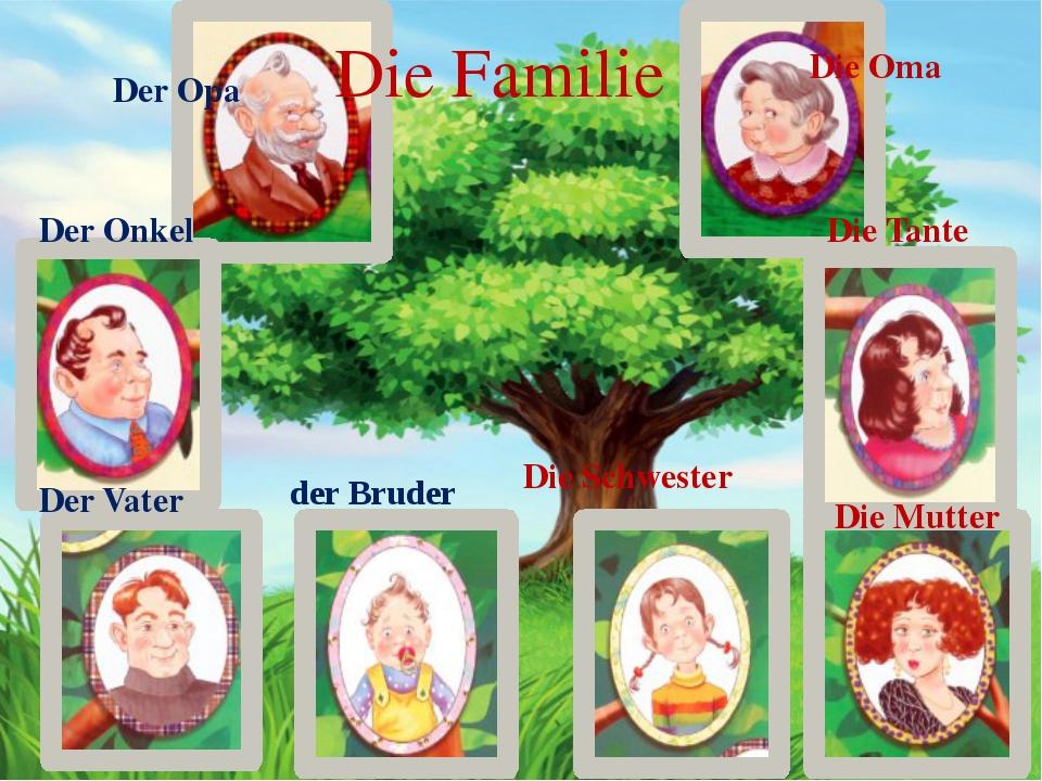 Die Familie Der Opa Der Onkel Der Vater der Bruder Die Schwester Die Mutter...