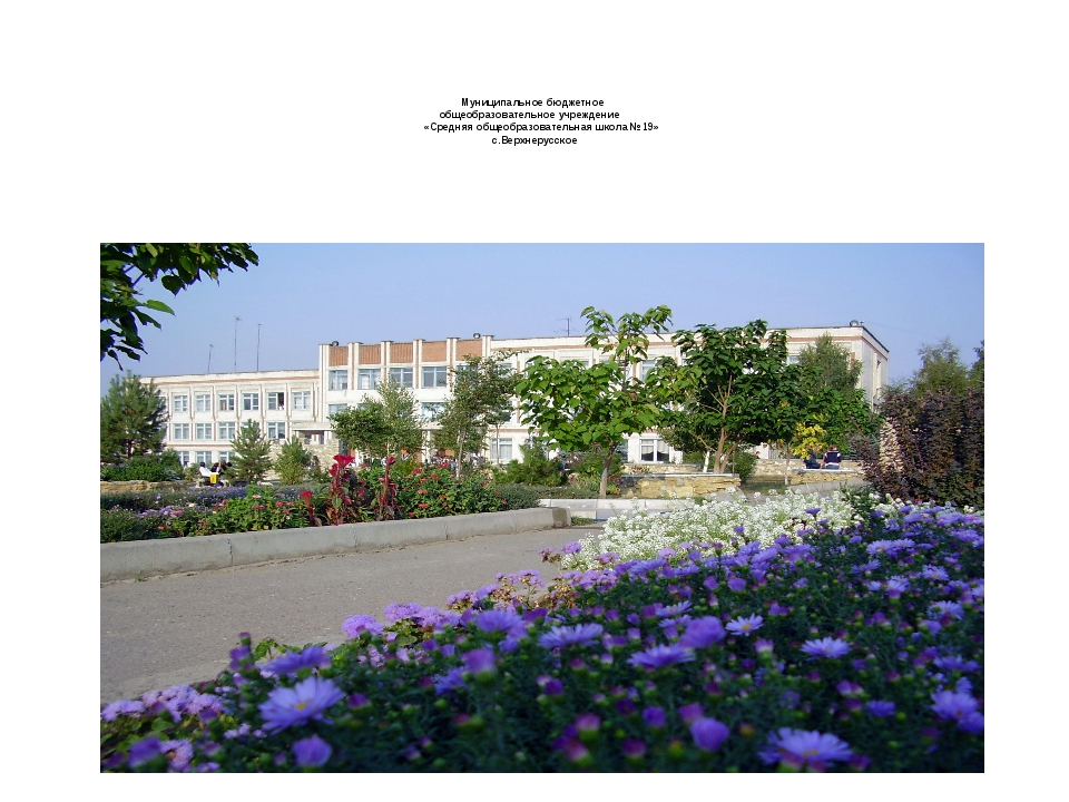 Муниципальное бюджетное общеобразовательное учреждение «Средняя общеобразова...