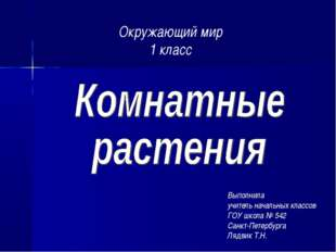 Выполнила учитель начальных классов ГОУ школа № 542 Санкт-Петербурга Лядвик Т