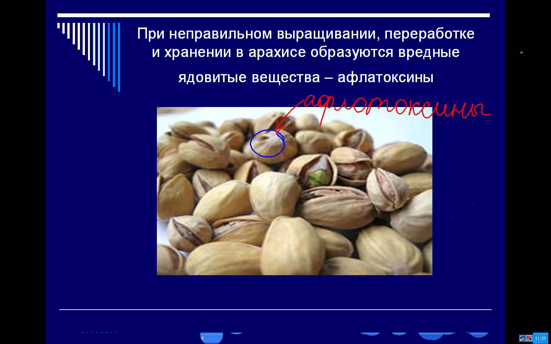 hello_html_224b7a50.jpg